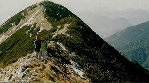Foto: Wolfgang Dröthandl / Wandertour / Aus dem Mendlingtal auf den Gamsstein / Gamsstein - Gipfelgrat nach Südwesten / 28.03.2011 16:29:39