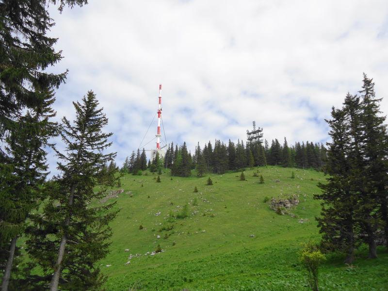 Foto: Günter Siegl / Wandertour / Sonnwendstein - Hirschenkogel / Gipfelaufbau Sonnwendstein / 10.06.2015 14:27:41
