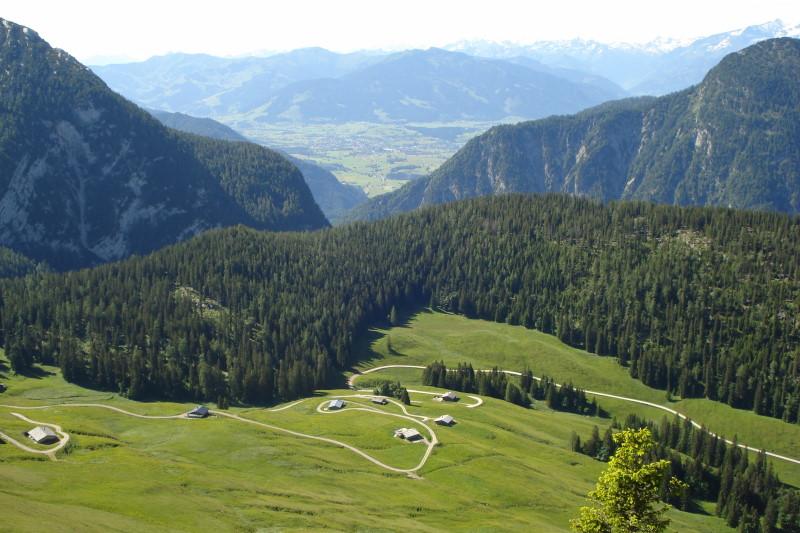 Foto: Günter Siegl / Wander Tour / Hochkranz, 1953m / Aufstiegsweg über Kallbrunnalm. / 08.06.2011 11:45:58
