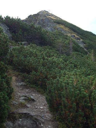 Foto: Wolfgang Dröthandl / Wander Tour / Wildseeloder und Henne / Gipfelkamm Henne  / 17.08.2015 15:04:47
