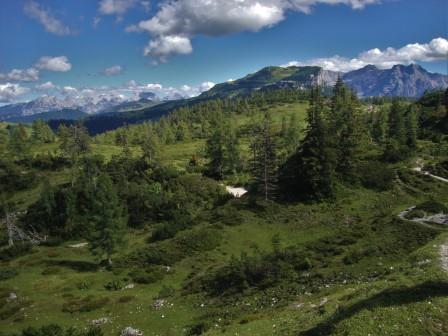 Foto: Wolfgang Dröthandl / Wander Tour / Von der Waidringer Steinplatte auf das Fellhorn / Waidringer Steinplatte vom Höhenweg / 23.08.2016 13:06:11