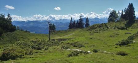 Foto: Wolfgang Dröthandl / Wander Tour / Von der Waidringer Steinplatte auf das Fellhorn / Blick vom Höhenweg Richtung Süden (Venedigergruppe) / 23.08.2016 13:05:30