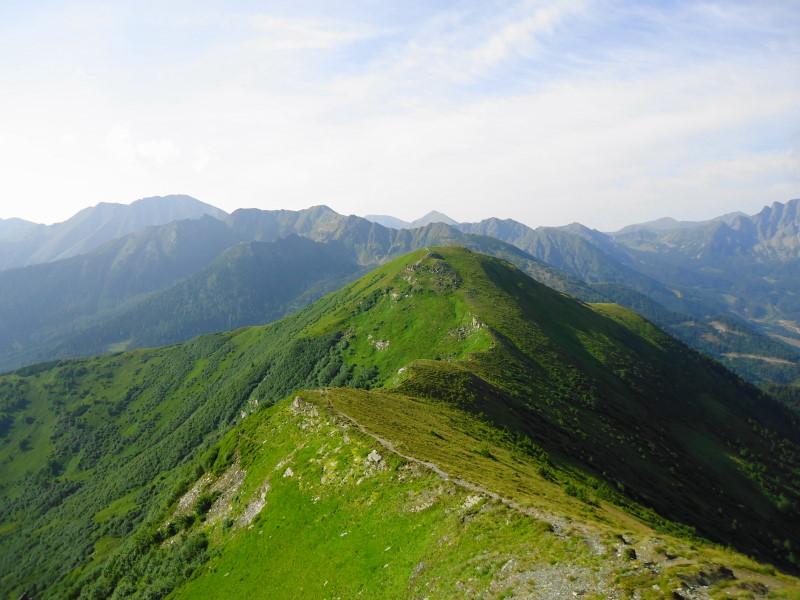 Foto: Günter Siegl / Wander Tour / Vom Liesinggraben auf das Himmeleck (2096m) / Rückblick Griesmoarkogel / 14.08.2014 17:34:19