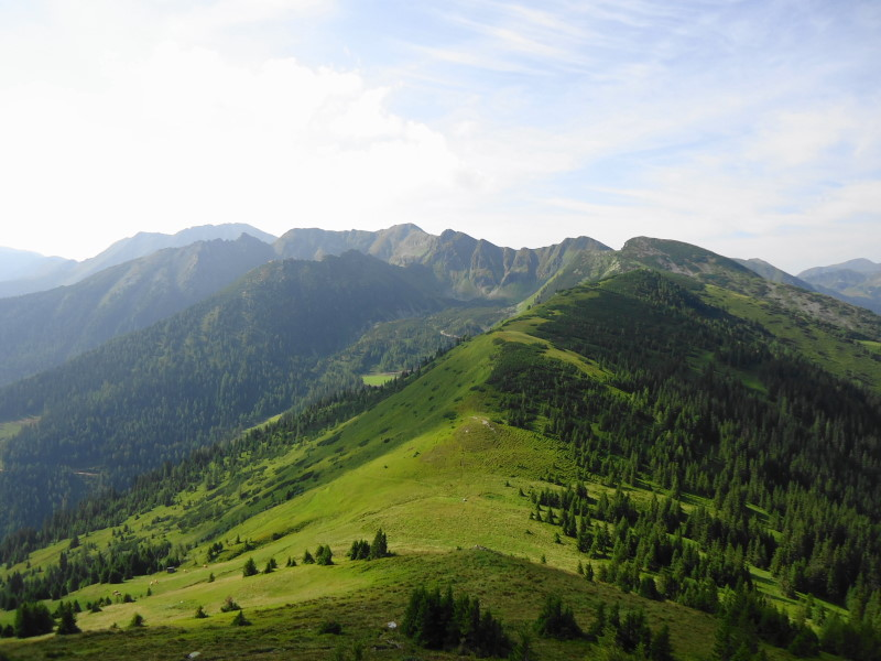Foto: Günter Siegl / Wander Tour / Vom Liesinggraben auf das Himmeleck (2096m) / Blick zum Geierhaupt (im Hintergrund) / 14.08.2014 17:32:19