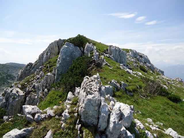 Foto: Günter Siegl / Wander Tour / Über die Ebenseer-Hochkogelhütte auf den Schönberg / Unmarkierter Aufstieg zum Wehrkogel / 07.07.2012 17:40:44