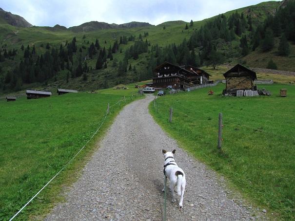 Foto: Andreas Koller / Wandertour / Von der Volkzeiner Hütte auf die Hochgrabe (2951m) / 23.04.2014 20:21:29