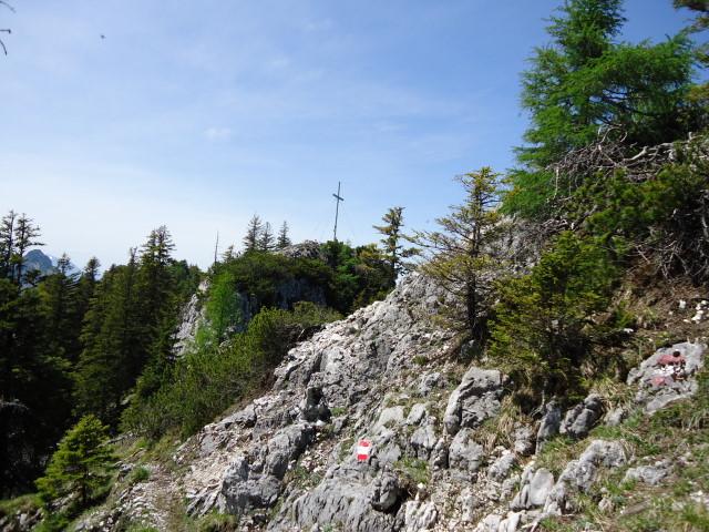 Foto: Günter Siegl / Wander Tour / Von Grünau auf den Zwillingskogel / 24.05.2012 17:41:51