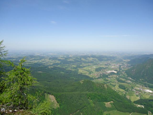 Foto: Günter Siegl / Wander Tour / Von Grünau auf den Zwillingskogel / 24.05.2012 17:42:27
