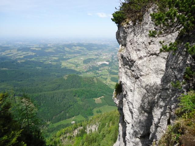 Foto: Günter Siegl / Wander Tour / Von Grünau auf den Zwillingskogel / 24.05.2012 17:42:48