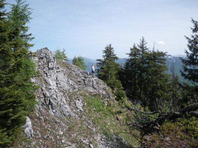 Foto: Günter Siegl / Wander Tour / Von Grünau auf den Zwillingskogel / 24.05.2012 17:43:04