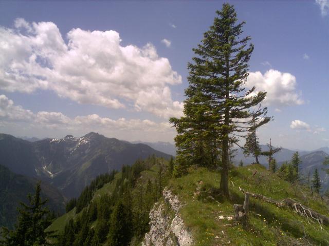 Foto: pepi4813 / Wander Tour / Von Rindbach auf den Eibenberg / Auf der Eibenbergschneid / 09.07.2009 22:07:29
