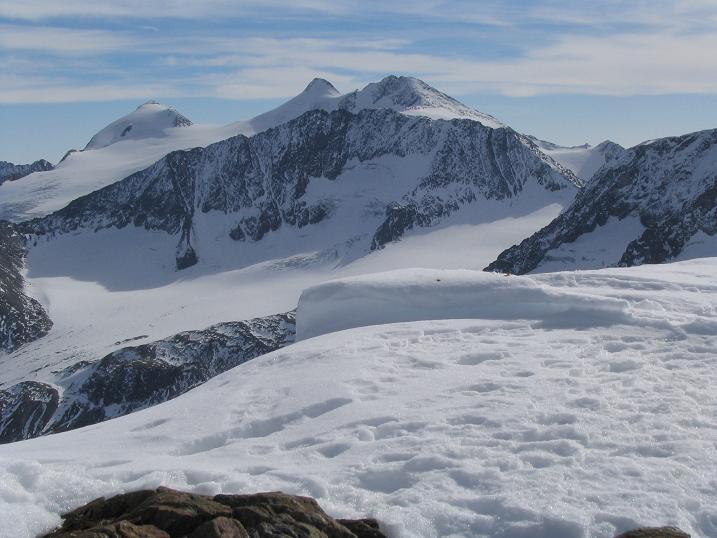 Foto: Andreas Koller / Wander Tour / Hinterer Daunkopf - ein stilles Ziel hoch über dem Stubaier Gletscherschigebiet (3225 m) / 05.06.2008 22:08:23