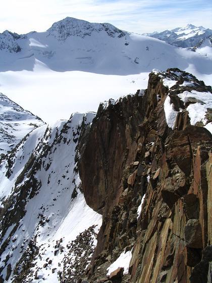 Foto: Andreas Koller / Wander Tour / Hinterer Daunkopf - ein stilles Ziel hoch über dem Stubaier Gletscherschigebiet (3225 m) / 05.06.2008 22:07:19