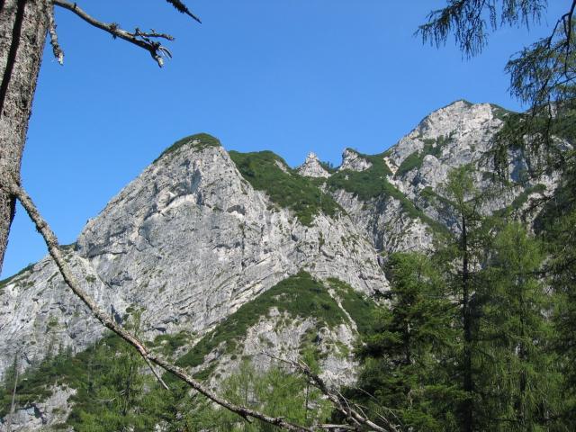 Foto: pepi4813 / Wandertour / Rinnkogel, 1823m / Am Abstiegsweg / 19.07.2009 10:32:58