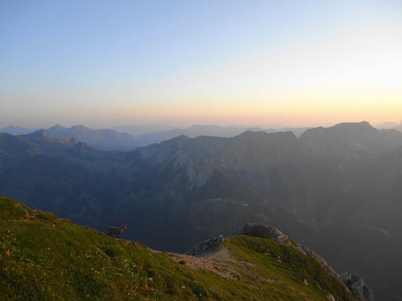 Foto: Günter Siegl / Wander Tour / Gößeck - Vorposten der Eisenerzer Alpen (2214m) / Hohe Scharte und Eisenerzer Reichenstein - rechts im Bild / 28.07.2014 16:43:08
