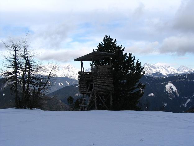 Foto: Andreas Koller / Wander Tour / Von Hohentauern auf den Geierkogel (2231m) / 10.06.2008 16:33:02