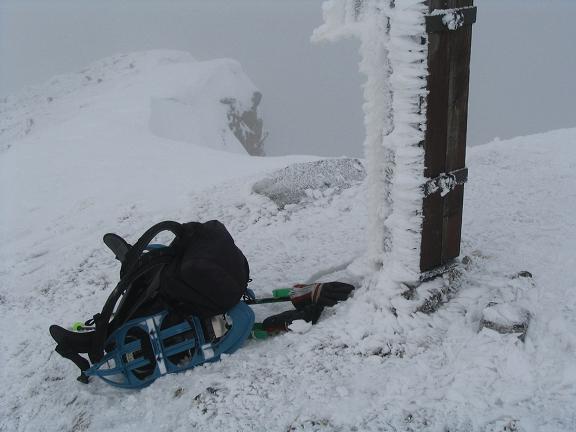 Foto: Andreas Koller / Wander Tour / Von Hohentauern auf den Geierkogel (2231m) / 10.06.2008 16:33:31