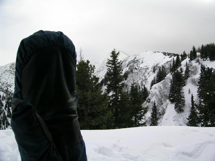 Foto: Andreas Koller / Wander Tour / Von Hohentauern auf den Geierkogel (2231m) / 10.06.2008 16:34:57