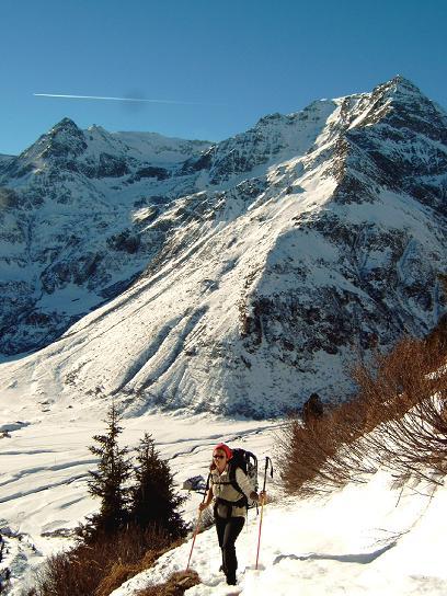 Foto: Andreas Koller / Wandertour / Auf ungewöhnlichem Weg auf den Silberpfennig (2600m) / 10.06.2008 16:51:19