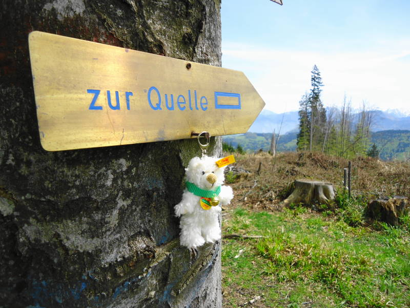 Foto: Günter Siegl / Wander Tour / Von Wessenaurach auf den Richtberg / Zur Quelle / 28.04.2015 16:08:39