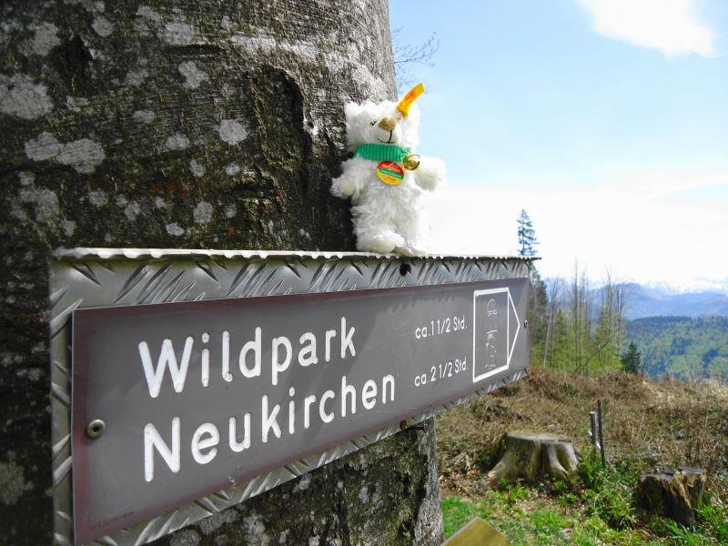 Foto: Günter Siegl / Wander Tour / Von Wessenaurach auf den Richtberg / Ein Weg würde zum ehemaligen Wildpark führen... / 28.04.2015 16:08:13