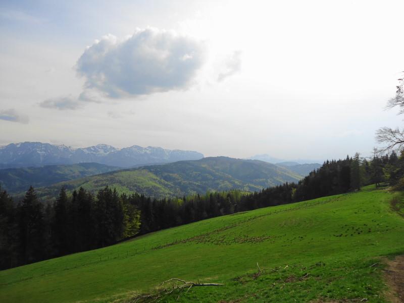 Foto: Günter Siegl / Wander Tour / Von Wessenaurach auf den Richtberg / Blick vom Hongar auf den Richtberg (in Bildmitte): / 28.04.2015 16:15:35