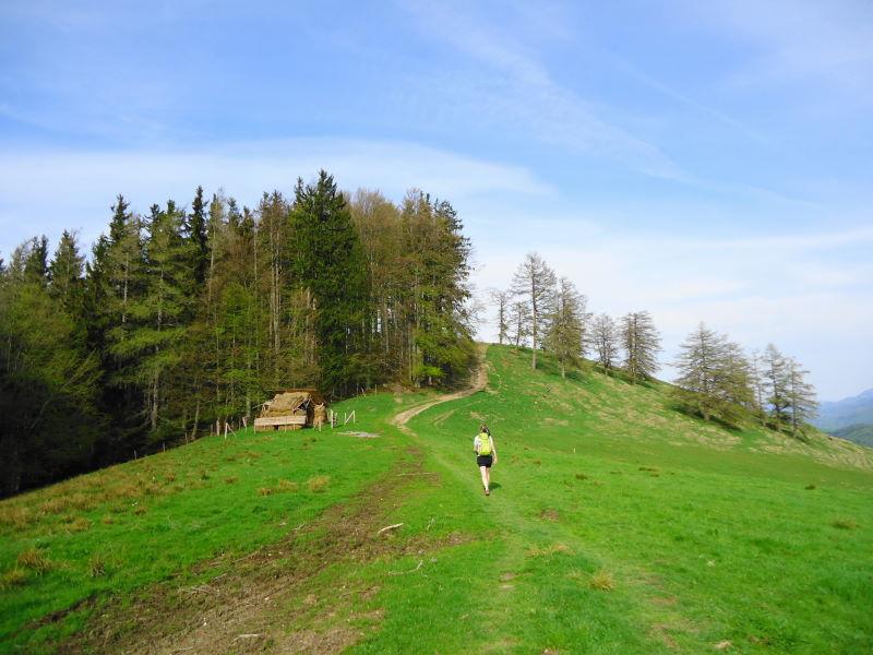 Foto: Günter Siegl / Wander Tour / Von Wessenaurach auf den Hongar / 29.04.2015 08:59:05