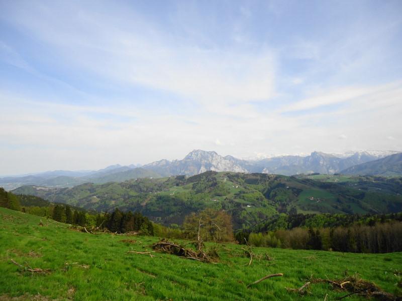 Foto: Günter Siegl / Wander Tour / Von Wessenaurach auf den Hongar / Traunstein-Blick / 29.04.2015 08:58:46