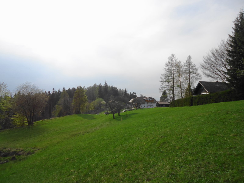 Foto: Günter Siegl / Wander Tour / Von Wessenaurach auf den Hongar / Schwarz am Hongar / 29.04.2015 08:56:48