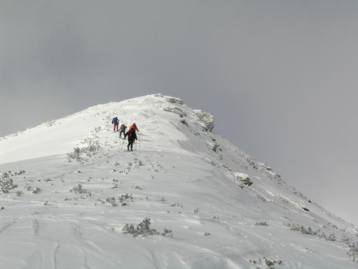 Foto: Andreas Koller / Wander Tour / Von der Planneralm über die Karlspitze auf die Schoberspitze (2126 m) / 12.06.2008 19:02:07