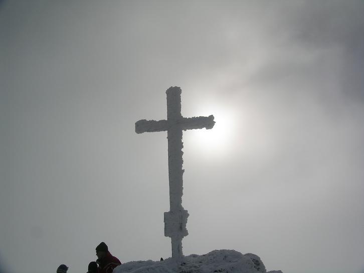 Foto: Andreas Koller / Wander Tour / Von der Planneralm über die Karlspitze auf die Schoberspitze (2126 m) / 12.06.2008 19:01:49