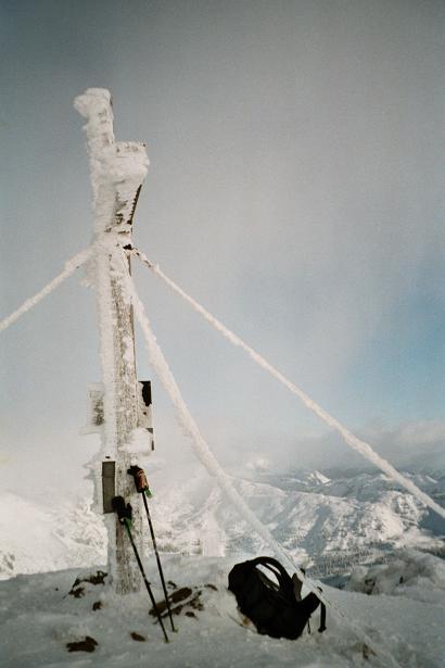 Foto: Andreas Koller / Wander Tour / Von der Planneralm über die Karlspitze auf die Schoberspitze (2126 m) / 12.06.2008 18:59:55