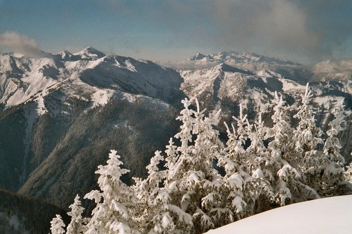 Foto: Andreas Koller / Wander Tour / Von der Planneralm über die Karlspitze auf die Schoberspitze (2126 m) / 12.06.2008 18:59:10