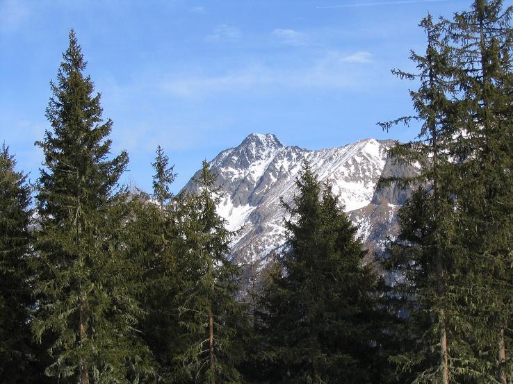 Foto: Andreas Koller / Wander Tour / Gensgitsch - Einsames Lungauer Wintermärchen (2279m) / 18.06.2008 01:52:16