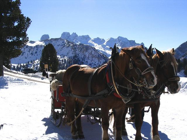 Foto: Andreas Koller / Wander Tour / Dürrenstein - inmitten der Pragser Dolomiten (2839m) / 24.12.2008 13:54:32