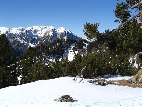 Foto: Andreas Koller / Wander Tour / Dürrenstein - inmitten der Pragser Dolomiten (2839m) / 24.12.2008 13:54:03
