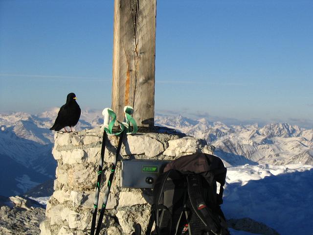 Foto: Andreas Koller / Wander Tour / Dürrenstein - inmitten der Pragser Dolomiten (2839m) / 24.12.2008 13:52:03
