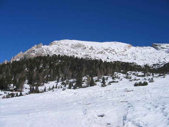 Foto: Andreas Koller / Wander Tour / Dürrenstein - inmitten der Pragser Dolomiten (2839m) / 24.12.2008 13:48:46
