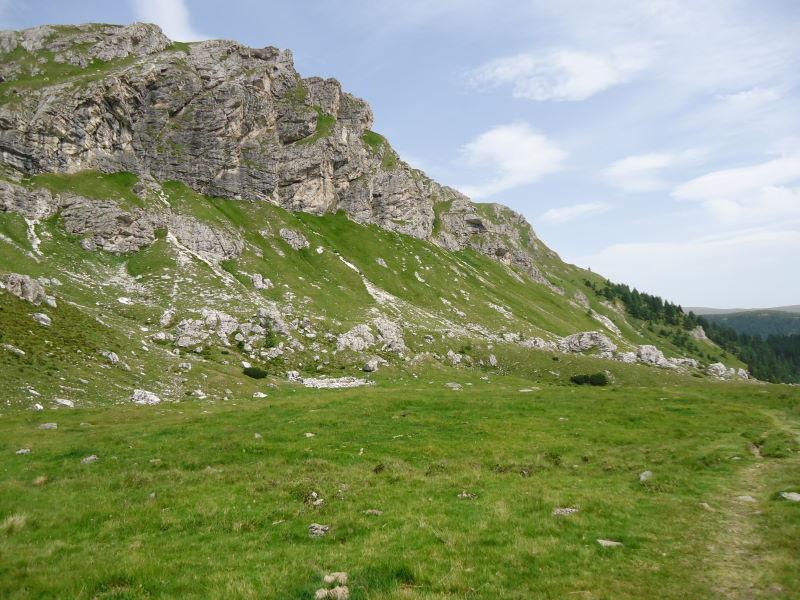 Foto: Günter Siegl / Wander Tour / Rosennock - höchste Erhebung der Kärntner Nockberge (2440m) / Weg zur Erlacher Bockhütte / 10.08.2013 19:58:15