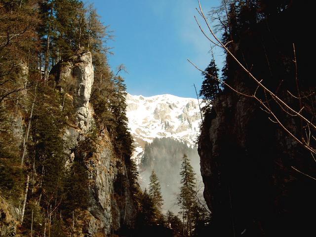 Foto: Andreas Koller / Wander Tour / Gsuchmauer und Stadelfeldschneid - zwei prächtige Aussichtsgipfel im Gesäuse (2116m) / 27.01.2009 19:56:24