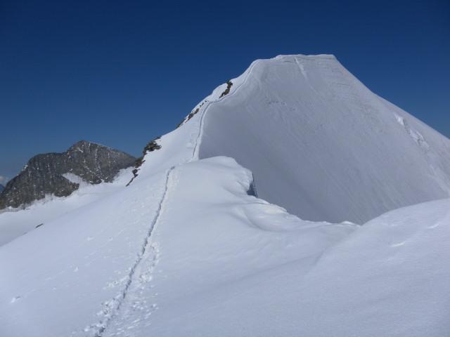 Foto: Wolfgang Lauschensky / Wander Tour / Piz Palü - Eisriese in der Berninagruppe (3905 m) / Firngratschneide zum Hauptgipfel / 04.11.2013 20:19:16
