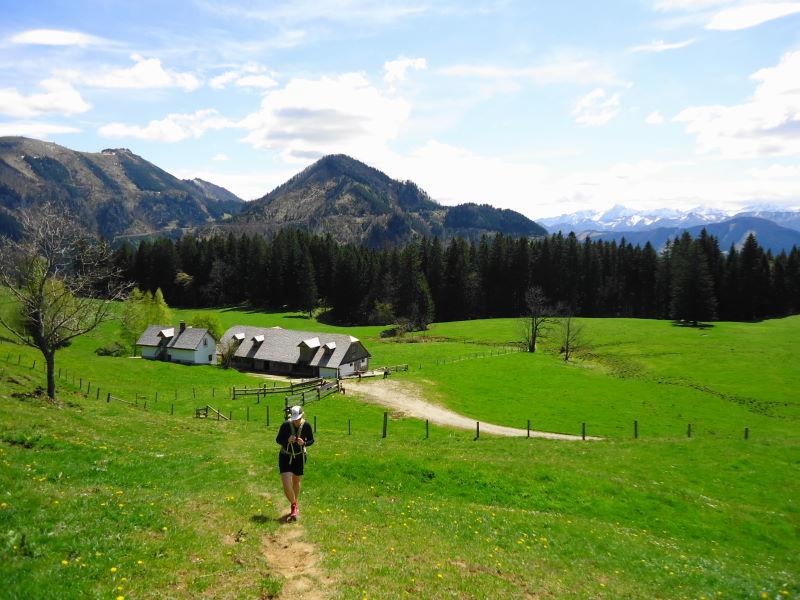 Foto: Günter Siegl / Wander Tour / Gschwendtalm und Brunnbacher Gamsstein / Gschwendtalm - bewirtschaftet ab etwa Mitte Mai / 26.04.2014 13:00:22