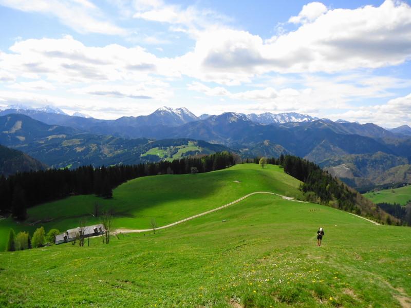 Foto: Günter Siegl / Wandertour / Gschwendtalm und Brunnbacher Gamsstein / Blick v.l.n.r: Haller Mauern, Größtenberg, Alpstein, Sengsengebirge... / 26.04.2014 13:01:52