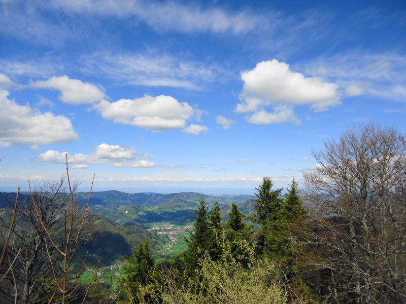 Foto: Günter Siegl / Wandertour / Gschwendtalm und Brunnbacher Gamsstein / Blick nach Norden zu Großraming und Spadenberg / 26.04.2014 13:02:53