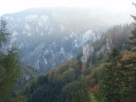 Foto: Lutzi / Wander Tour / Klettersteige Weichtalklamm und Turmstein / 13.01.2008 16:34:36