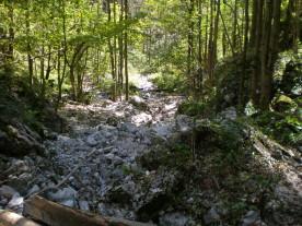 Foto: Lutzi / Wander Tour / Klettersteige Weichtalklamm und Turmstein / 13.01.2008 16:26:49