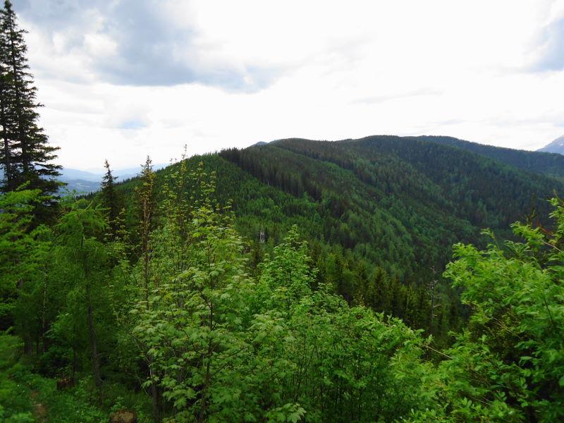 Foto: Günter Siegl / Wander Tour / Von Mürzzuschlag über die Kampalpe auf den Semmering / 10.06.2015 14:48:02