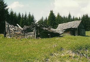 Foto: Wolfgang Dröthandl / Wander Tour / Von Mürzzuschlag über die Kampalpe auf den Semmering / Auf dem Beeralpl (Mai 2005!) / 07.03.2011 16:54:47