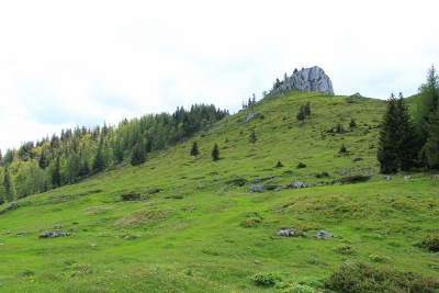 Foto: Karl Hoffmann / Wander Tour / Von St. Wolfgang auf den Vormauerstein / Der Vormauerstein - 1.450 m - von der Vormaueralm aus gesehen  / 11.06.2013 12:55:18