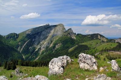 Foto: Karl Hoffmann / Wander Tour / Von St. Wolfgang auf den Vormauerstein / Blick auf Schafberg 1.782 m, Spinnerin 1.725 m und Törlspitz 1.589 m / 11.06.2013 12:45:52